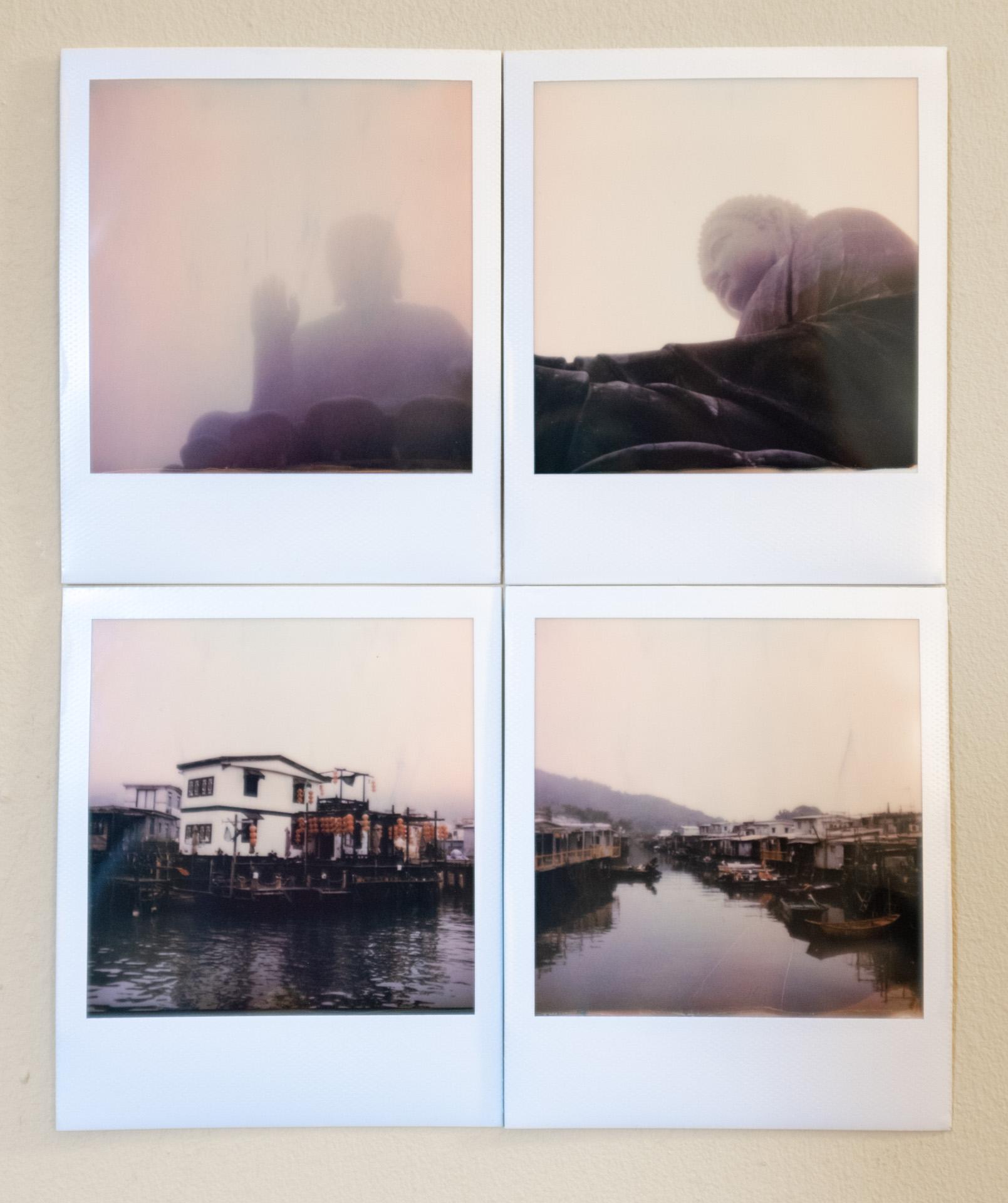Various polaroids